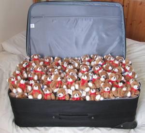 teddycase 003
