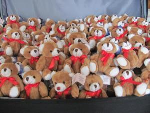 teddycase 008
